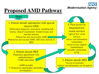 Proposed AMD Pathway