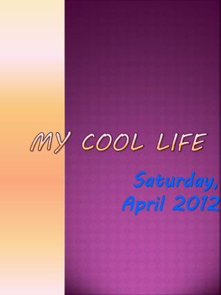 My Cool Life
