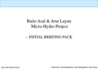 Bario Asal & Arur Layun  Micro-Hydro Project   –  INITIAL BRIEFING PACK