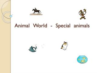 Animal  World  -  Special  animals