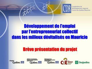 Développement de l'emploi par l'entrepreneuriat collectif dans les milieux dévitalisés en Mauricie
