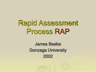 Rapid Assessment Process RAP