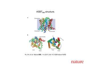 N-J Hu  et al .  Nature 000 ,  1 - 4  (2011) doi:10.1038/nature10450