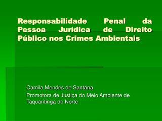 Responsabilidade Penal da Pessoa Jurídica de Direito Público nos Crimes Ambientais