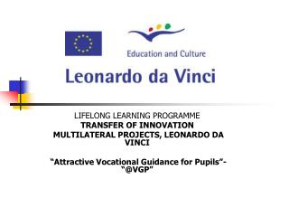LIFELONG LEARNING PROGRAMME TRANSFER OF INNOVATION  MULTILATERAL PROJECTS, LEONARDO DA VINCI