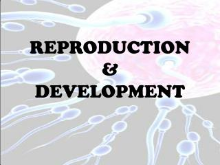 REPRODUCTION  & DEVELOPMENT