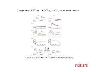 H Suzuki  et al .  Nature 454 , 114-117 (2008) doi:10.1038/nature06927