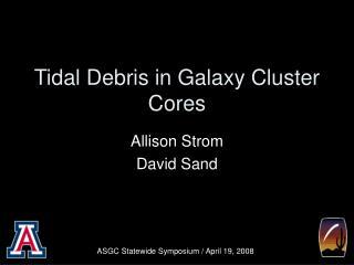 Tidal Debris in Galaxy Cluster Cores