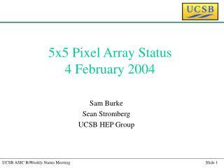 5x5 Pixel Array Status 4 February 2004