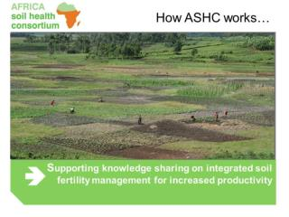 ASHC partners include: