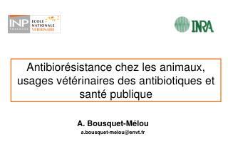Antibiorésistance chez les animaux, usages vétérinaires des antibiotiques et santé publique