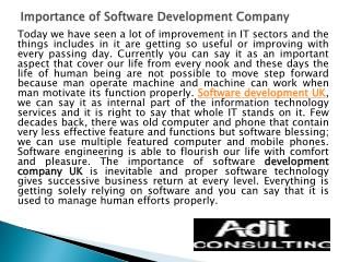 Importance of Software Development Company
