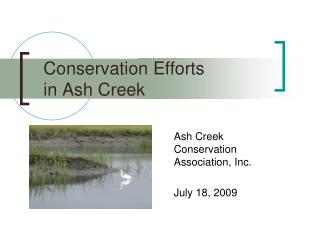 Conservation Efforts  in Ash Creek