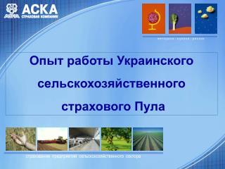 Опыт работы Украинского  сельскохозяйственного  страхового Пула