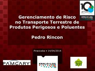 Gerenciamento de Risco  no Transporte Terrestre de Produtos Perigosos e Poluentes Pedro Rincon