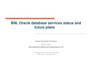 BNL Oracle database services status and future plans
