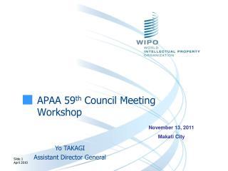 APAA 59 th  Council Meeting Workshop