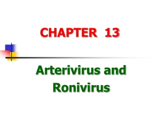 Chapter 8. Transient response