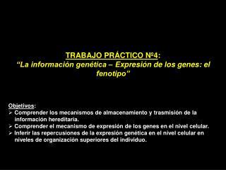 """TRABAJO PRÁCTICO Nº4 :  """"La información genética – Expresión de los genes: el fenotipo"""""""