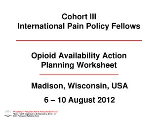 Cohort III International Pain Policy Fellows