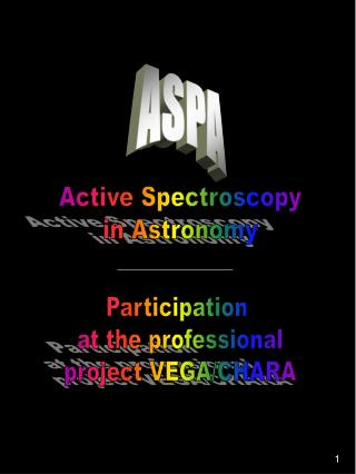 Participation  at the professional project VEGA/CHARA
