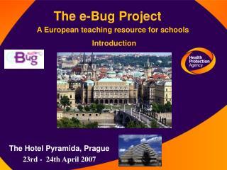 The e-Bug Project