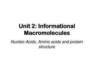 Unit 2: Informational Macromolecules