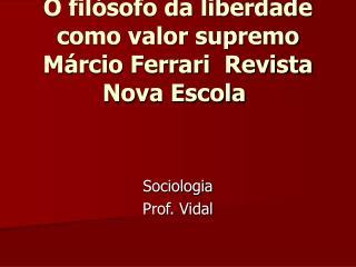 Sociologia Prof. Vidal