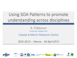 Using SOA Patterns to promote understanding across disciplines