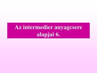 Az intermedier anyagcsere alapjai  6 .