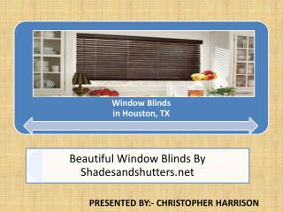 window wood blinds