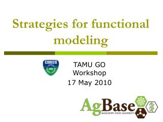 Strategies for functional modeling