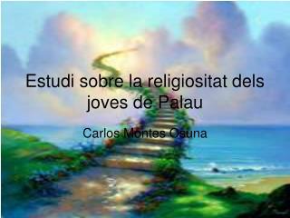 Estudi sobre la religiositat dels joves de Palau