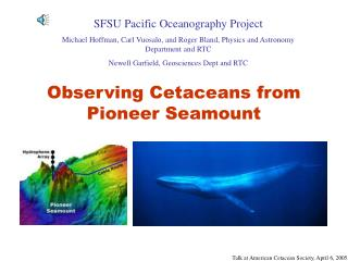 Observing Cetaceans from Pioneer Seamount