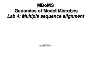 MBoMS  Genomics of Model Microbes Lab 4: Multiple sequence alignment