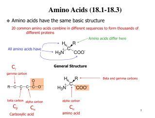 Amino Acids (18.1-18.3)