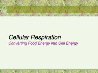 Cellular Respiration Converting Food Energy into Cell Energy
