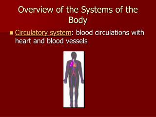 Overview of the Systems of the Body