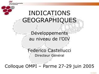 INDICATIONS GEOGRAPHIQUES