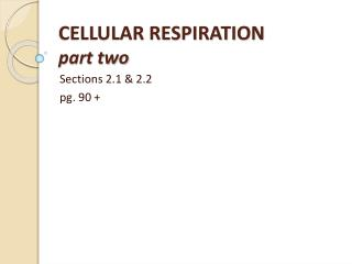 CELLULAR RESPIRATION part two