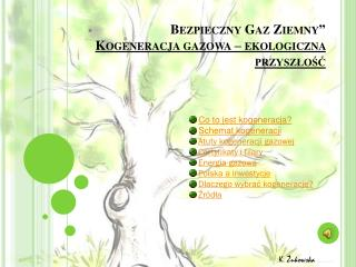 """Bezpieczny Gaz Ziemny""""  Kogeneracja gazowa – ekologiczna przyszłość"""