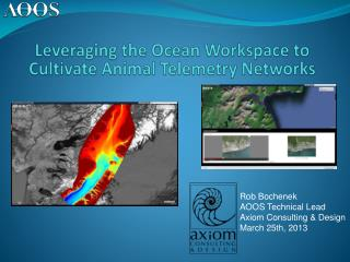 Leveraging the Ocean Workspace to Cultivate Animal Telemetry Networks