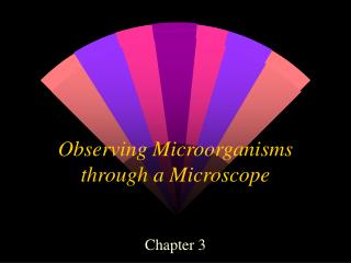 Observing Microorganisms through a Microscope