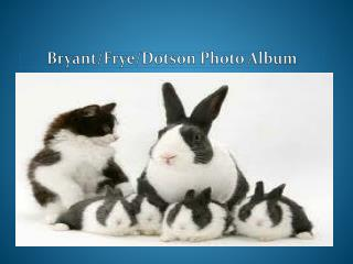 Bryant/Frye/Dotson Photo Album