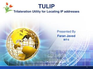TULIP Trilateration Utility for Locating IP addresses