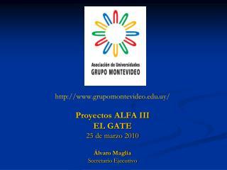 grupomontevideo.uy/ Proyectos ALFA III EL GATE 25 de marzo 2010 Álvaro Maglia