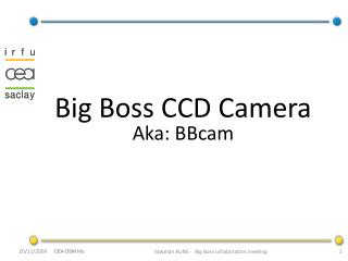 Big Boss CCD Camera Aka: BBcam