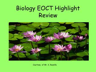 Biology EOCT Highlight Review
