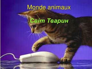 Monde animaux Світ Тварин