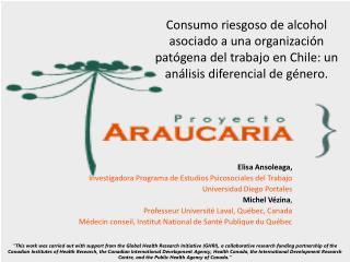 Elisa Ansoleaga, Investigadora Programa  de Estudios Psicosociales del Trabajo